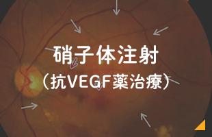 硝子体注射(抗VEGF薬治療)